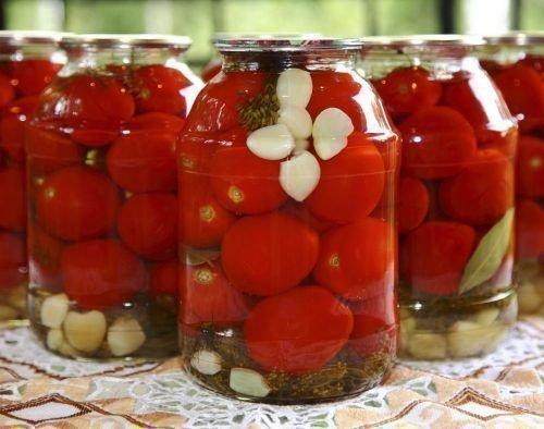 Соленья из томатов