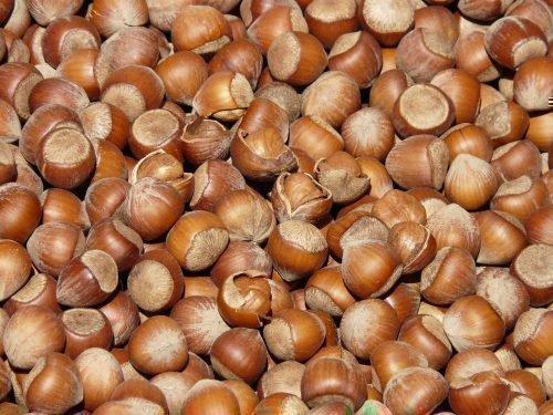 Орехи лещины