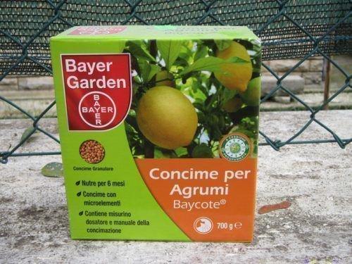 Удобрения для цитрусовых
