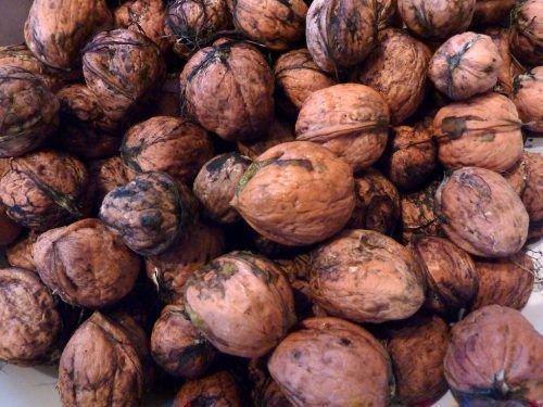 Урожай ореха