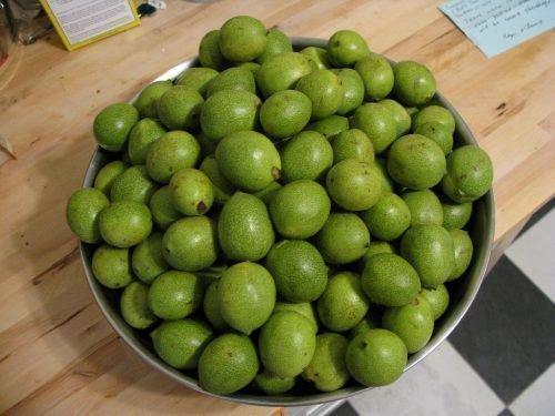 Урожай зеленых орехов