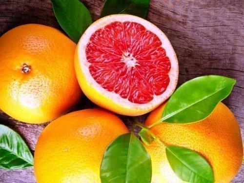 грейпфрут выращивание в домашних условиях