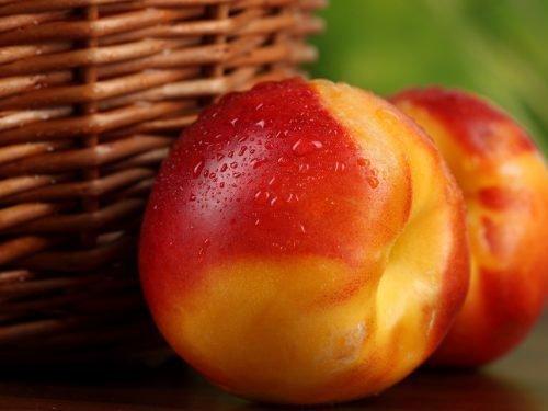 нектарин смесь персика с чем