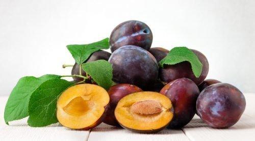 почему опадают плоды сливы