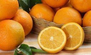 Сорта и разновидности апельсинов