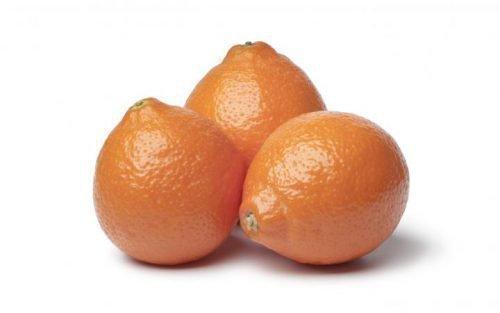 гибрид танжерина и грейпфрута