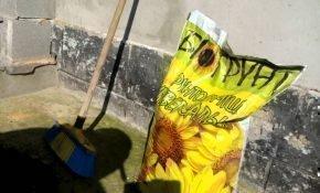 Особенности грунтовых смесей для посадки цитрусовых