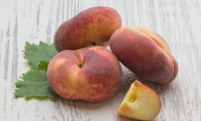 Особенности инжирного персика