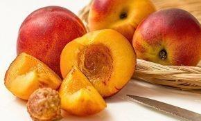 Особенности выращивания гибрида персика и яблока