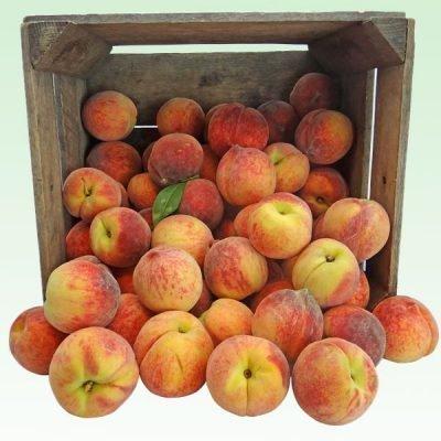 золотой юбилей персик