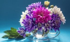 Как надолго сохранить букет хризантем в вазе