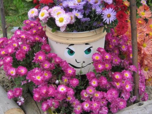 размножение хризантемы черенками осенью