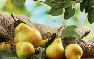 Сколько калорий содержится в груше и в чем её польза