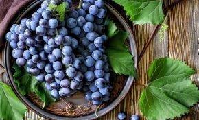 5 проверенных способов повысить урожай винограда