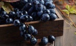 Чем полезен и вреден черный виноград