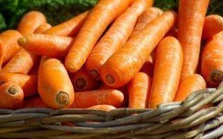 15 методов хранения моркови в погребе или квартире