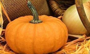 8 лучших способов хранения тыквы