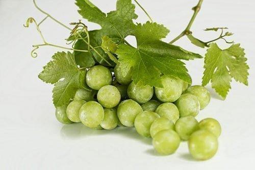 Виноград при ГВ