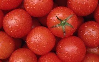 В чем разница между детерминантными и индетерминантными помидорами