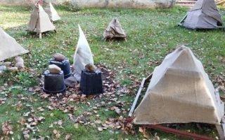Способы подготовить садовые гортензии к зимовке