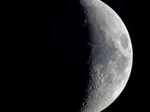 Посадка тюльпанов на убывающую Луну