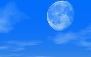Детальный лунный посевной календарь огородника на 2021 год