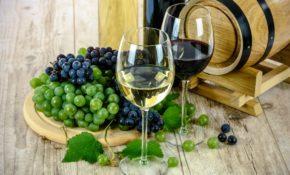 Самые вкусные сорта винограда: крупные, зимостойкие, ранние, среднеспелые, поздние, сорта винограда с вкуснейшими ягодами