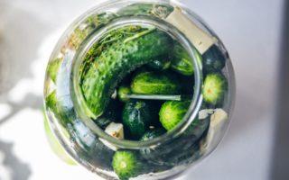 Рецепт засолка огурцов: холодный и горячий способ, маринованные, квашенные огурцы